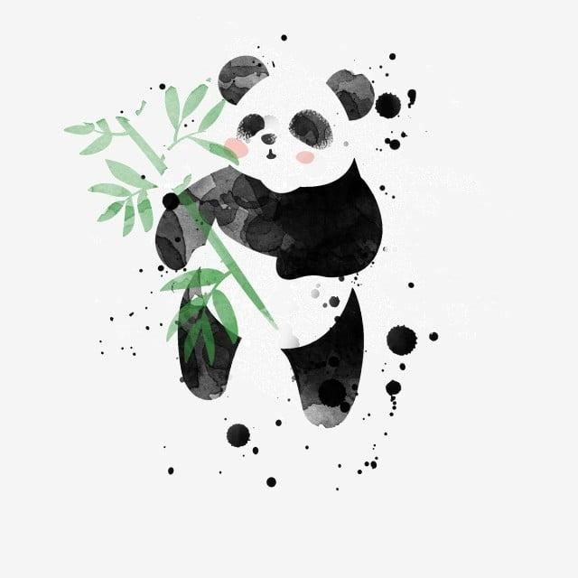 Panda De Dessin Animé Dessin Animé Panda Dressé Panda
