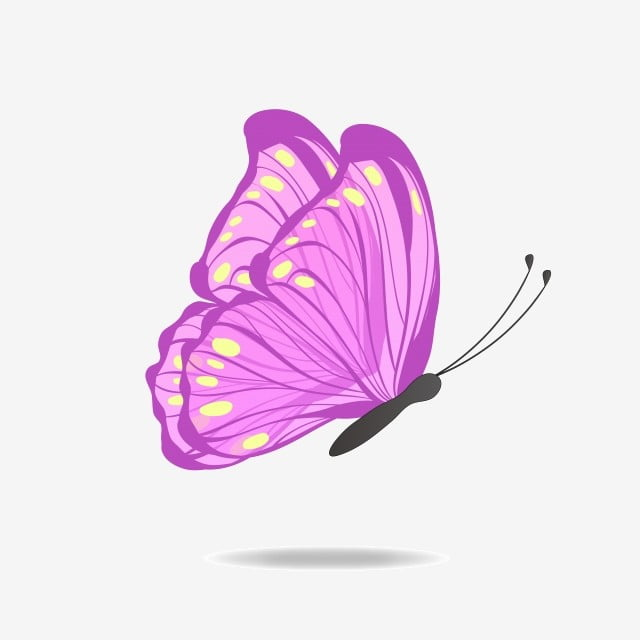 vector butterfly wings beautiful purple dance, purple, yellow, butterfly  png and vector with transparent background for free download  pngtree