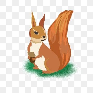 Dipinta a mano il piccolo scoiattolo immagini png vettori e file