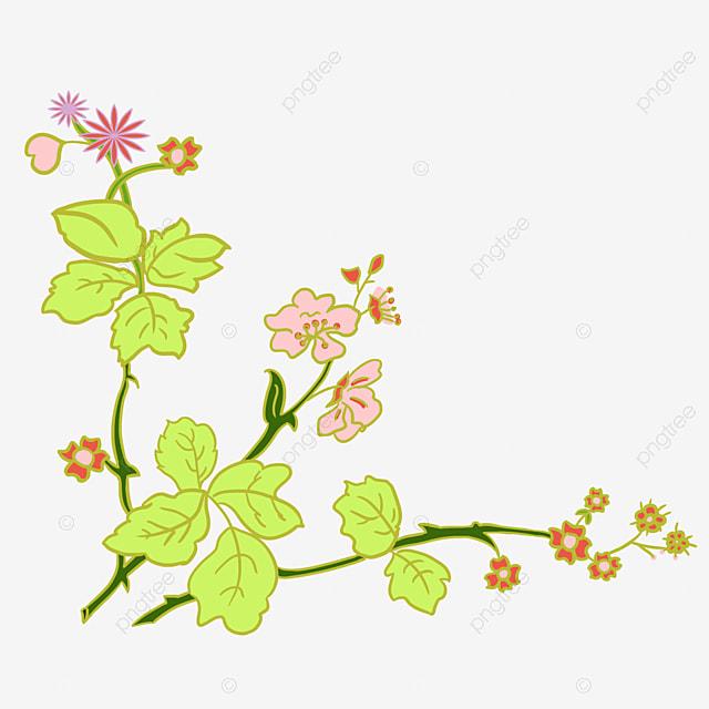 Tanaman Bunga Tanaman Bunga Yang Indah Bunga Merah Tanaman Tanaman Merambat Bunga Png Transparan Gambar Clipart Dan File Psd Untuk Unduh Gratis