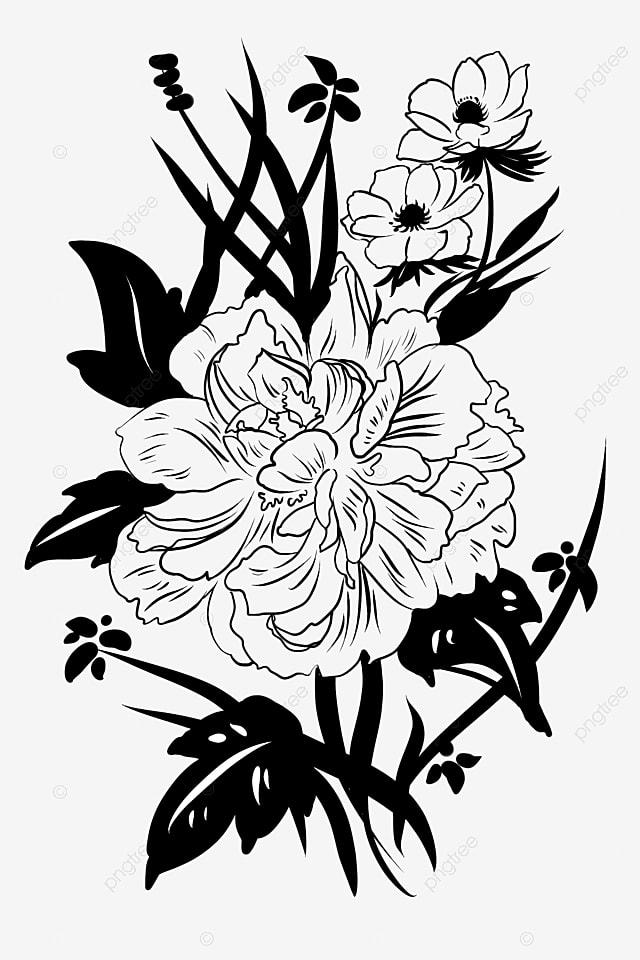 Peinture Noir Et Blanc Fleur Dessin Au Trait Fleur Fleur