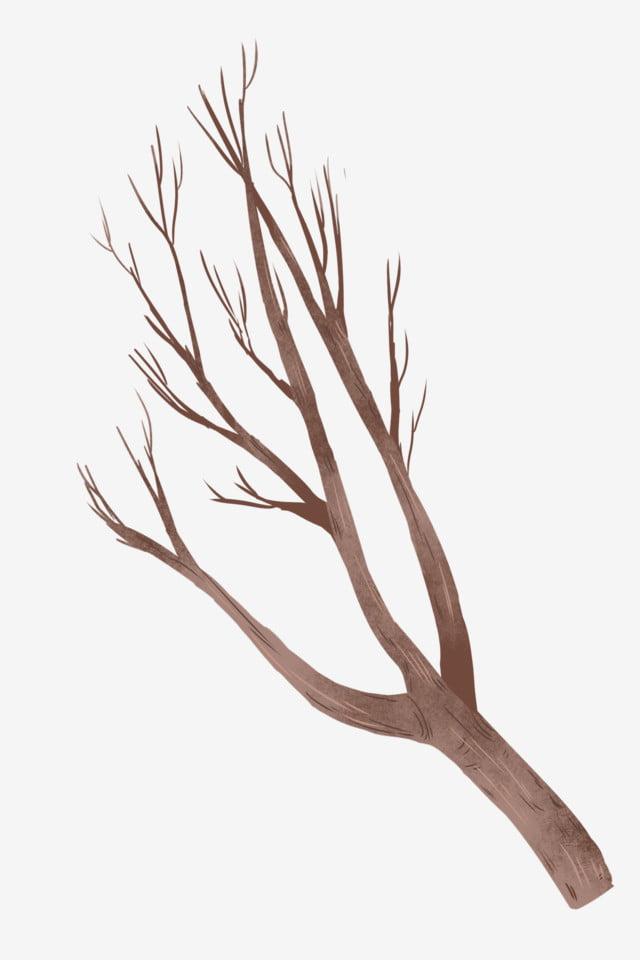warna kopi layu cabang warna kopi layu cabang png transparan gambar clipart dan file psd untuk unduh gratis pngtree