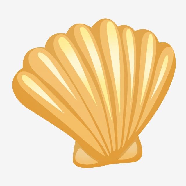 Shell Png, Vetores, PSD e Clipart Para Download Gratuito ...