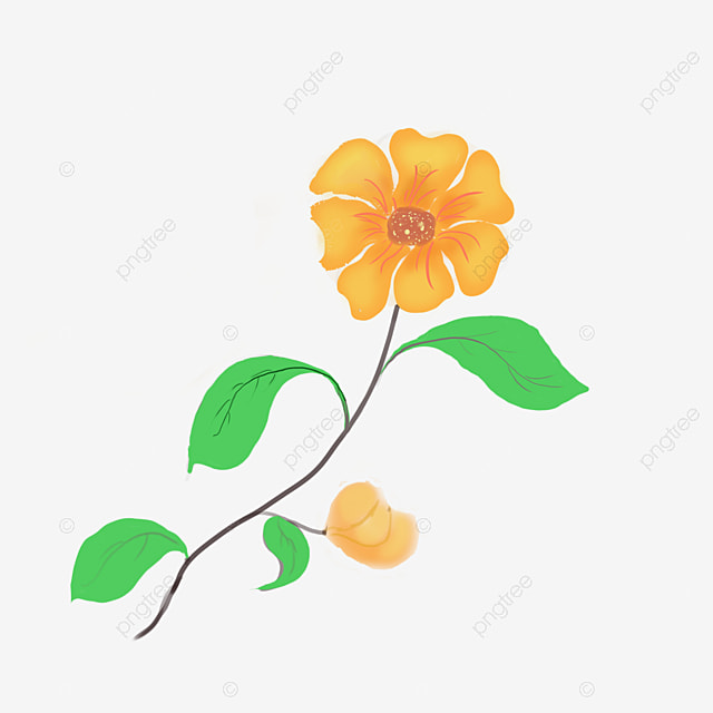 Yellow Flower Branch Decoration Illustration Yellow Flowering