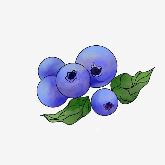Cartoon Fruit Blueberry Cartoon Blueberry Summer Fruit ...