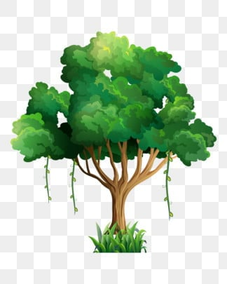 Tree PNG Images, Download 55,824 PNG Resources with Transparent