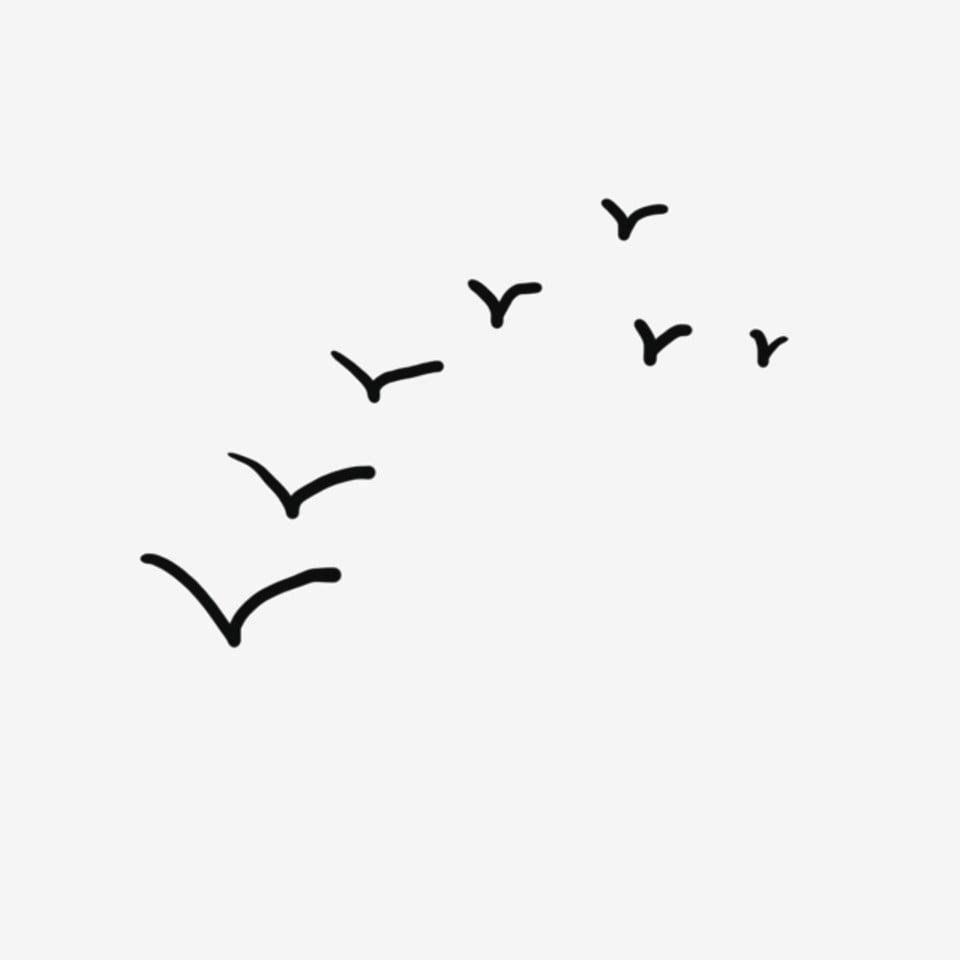 أوزة برية السماء الطيران قطيع يطير الإوز الطيران Png وملف Psd للتحميل مجانا