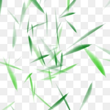 Free Download | Fuzzy Leaves PNG Images, blurry, leaves