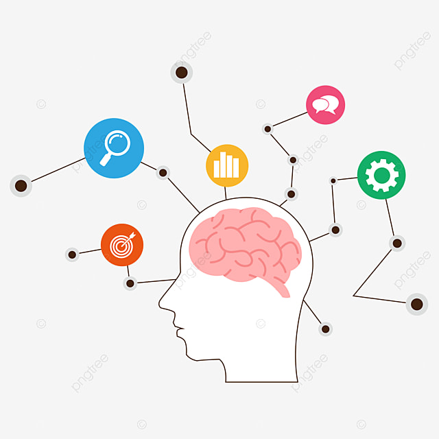 الدماغ خريطة العقل الدماغ التفكير في الخريطة الذهنية خرائط ذهنية فارغة Png والمتجهات للتحميل مجانا