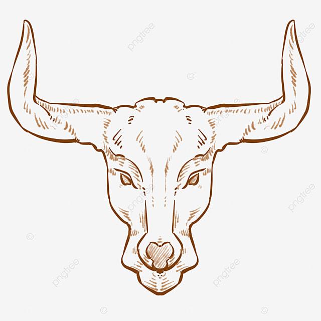Logo De Tete De Taureau Dessin Au Trait Clipart Noir Et Blanc Tete De Bœuf Animal Fichier Png Et Psd Pour Le Telechargement Libre