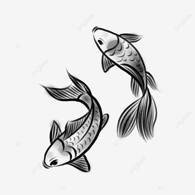 Tinta Ikan Mas Dua Ikan Tinta Gaya Cina Karper Png Transparan Gambar Clipart Dan File Psd Untuk Unduh Gratis