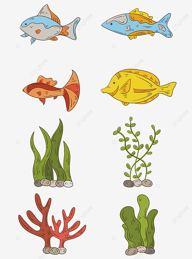 Gambar Kartun Berwarna Warni Makhluk Bawah Laut Ikan Elemen Karang Rumput Laut Kartun Vektor Warna Png Dan Vektor Dengan Latar Belakang Transparan Untuk Unduh Gratis