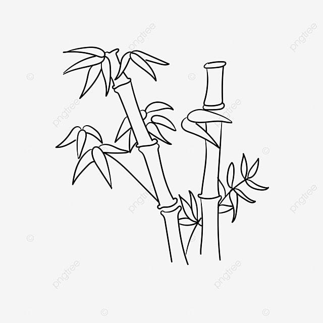 bambu lineart unduh gratis ilustrasi vektor format ai desain datar png dan vektor dengan latar belakang transparan untuk unduh gratis bambu lineart unduh gratis ilustrasi