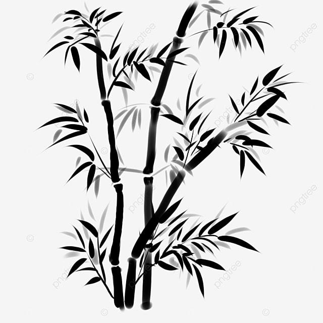 gambar bambu dan rebung bahan vektor bambu dan rebung unduhan template bambu dan rebung bambu dan rebung png transparan gambar clipart dan file psd untuk unduh gratis gambar bambu dan rebung bahan vektor