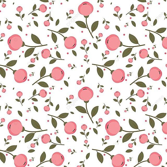 Patron De Flores De Color Rosa Sobre Fondo Blanco Background Pattern ...