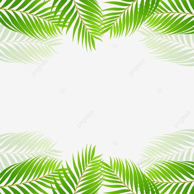 Green Tropical Leaf Border Vector, Green, Tropical, Leaf ...