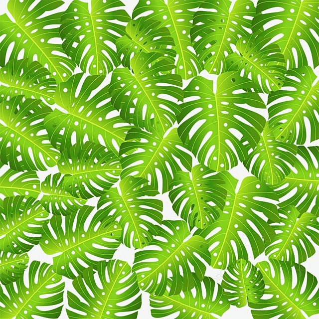 Topical Leaf Background Vector, Tropical Flower, Flowers ...