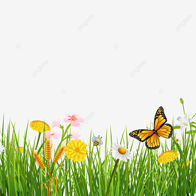 Spring Flower With Green Background Vector 02 Free Download: Spring Grass With Butterflies Beautiful Background, Green