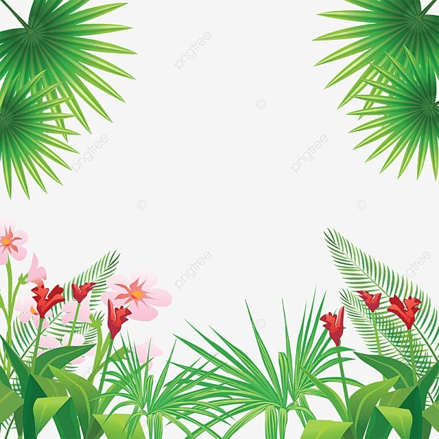 tropical leaves flowers frame tropical flowers png and vector for