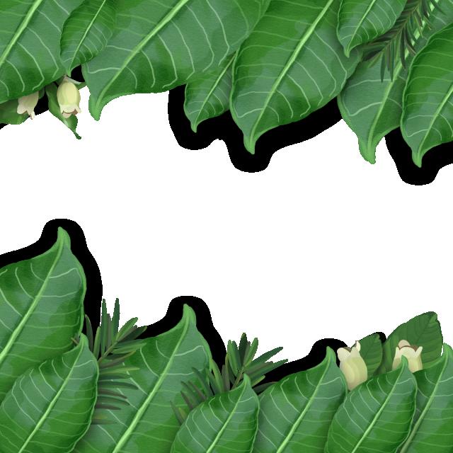 Watercolor Tropical Leaf Arrangement, Tropical Leaf ...