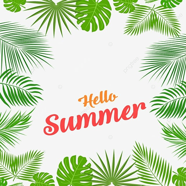 Summer Aloha Tropical Leaves Frame, Summer, Green Leaf PNG and PSD ...