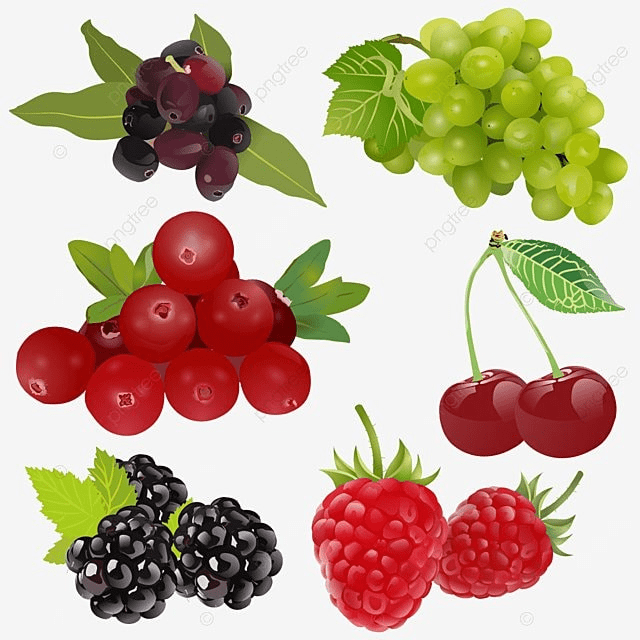 1 of 4 fruit set drawing 3d stock set clipart exquisite
