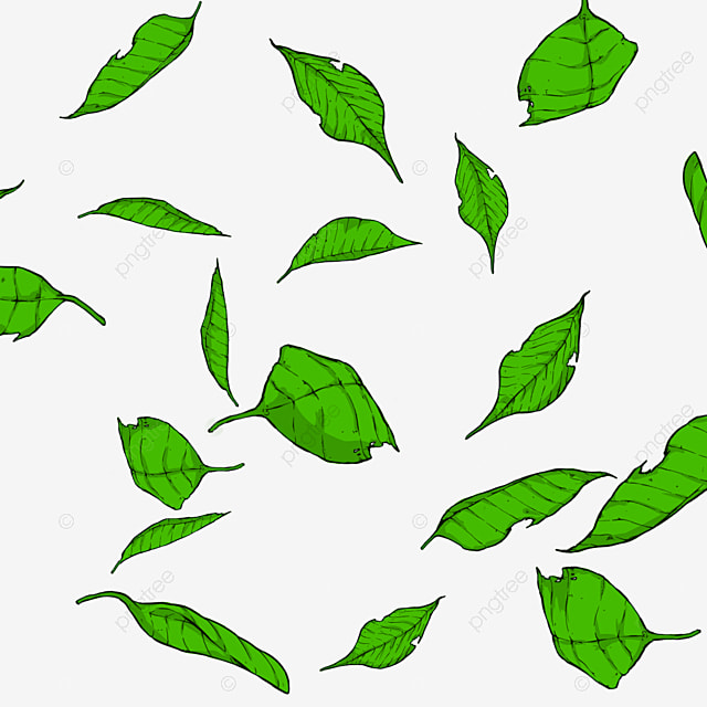 Leafs Vector Cartoon Leaf Leafs Png Transparent Clipart Image And Psd File For Free Download