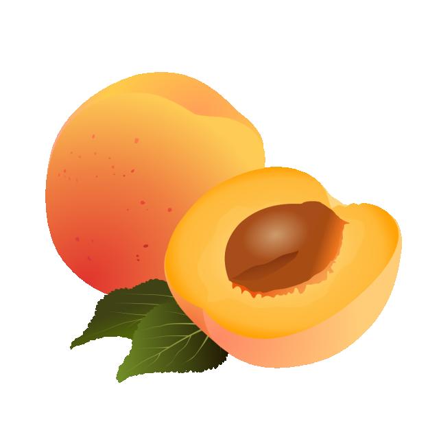 Веселый абрикос картинки, днем
