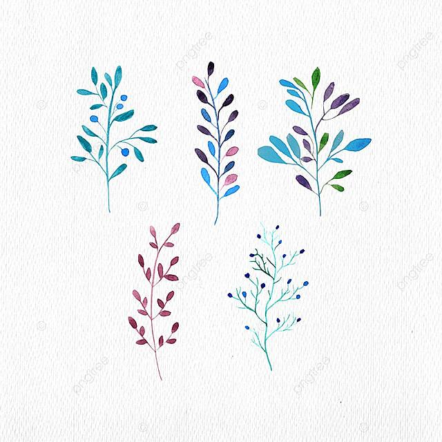 d5443eedc6c53 Conjunto de hojas y ramas elementos acuarela Gratis PNG y Vector