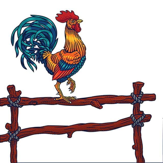 9bb487f8d1b4a Ilustración vectorial de un gallo Gratis PNG y Vector