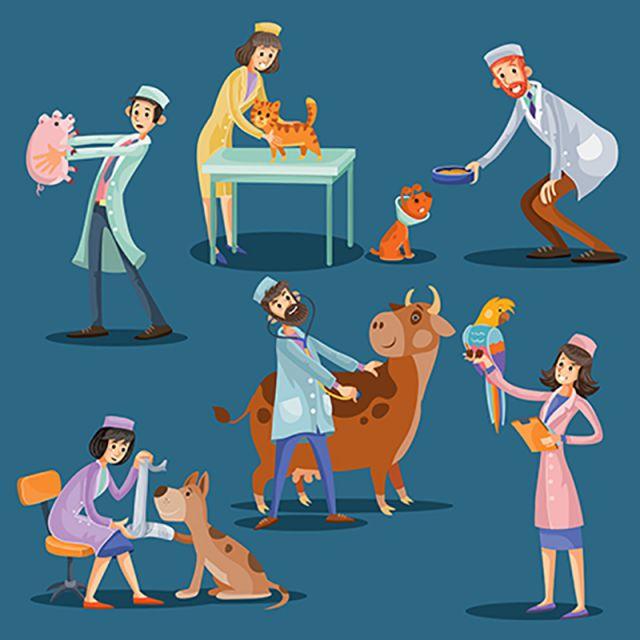 illustration vectorielle des v u00e9t u00e9rans mignon animaux