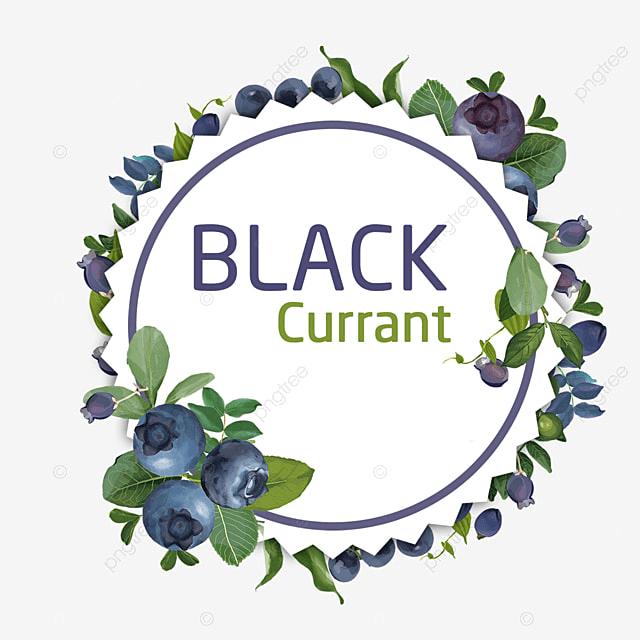 Lít Tràng Hoa Hình Dán Màu Nước Đen Trang Trí. Miễn Phí Png Và Psd