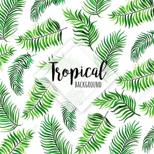 Patrón De Tropical Con Diferentes Hojas De Estilo De Acuarela ...