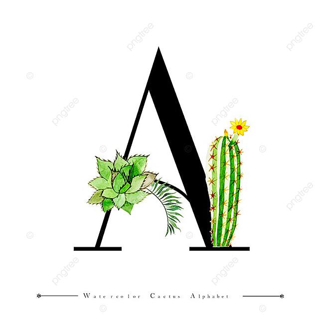 Alfabeto Carta Una Acuarela De Fondo Con Cactus Y Hojas, Acuarela ...