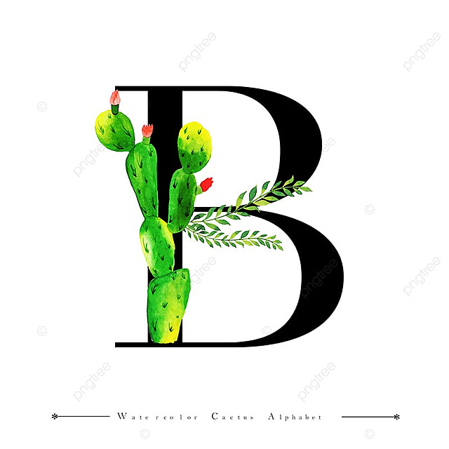 alphabet letter b with watercolor cactus and leaves background  watercolor  color  floral png