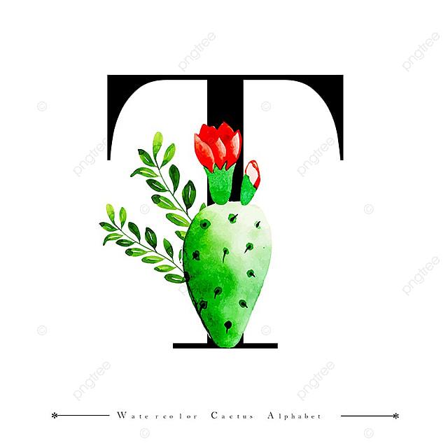 alphabet letter t with watercolor cactus and leaves
