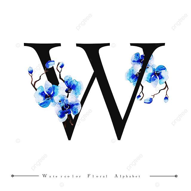 w lettre de l alphabet aquarelle fond floral peinture