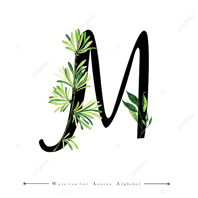 letter m with watercolor leaves background  watercolor  color  floral png and vector with
