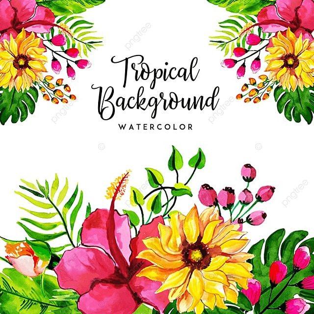 Acuarela Floral Tropical Y Hojas De Fondo, Acuarela, Color, Pintura ...