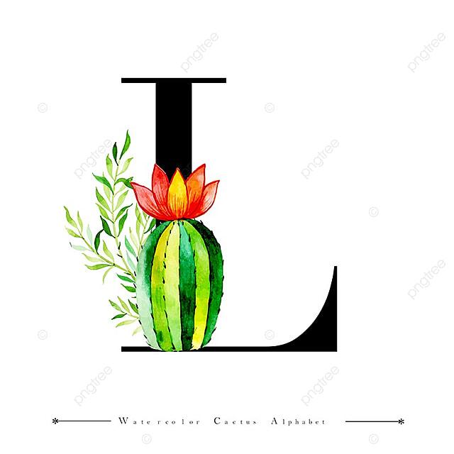 Alfabeto Letra L Con Acuarela Cactus Y Hojas De Fondo, Acuarela ...