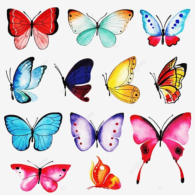 Watercolor Butterflies Collection , Watercolor, Butterfly