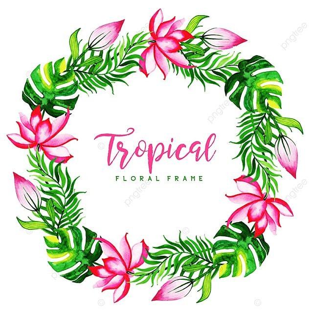 aquarelle tropical cadre floral de fond aquarelle couleur