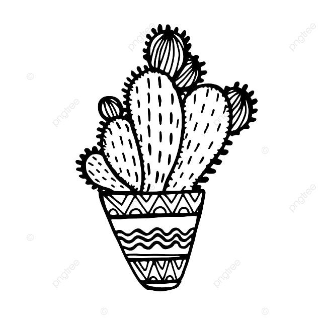 милые картинки кактусов черно белые высоко