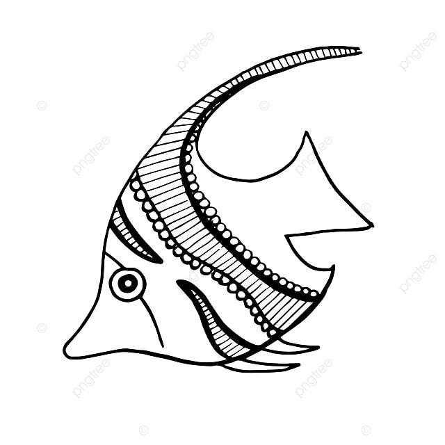 Hermosos Peces Dibujados A Mano En Blanco Y Negro Mano Dibujado