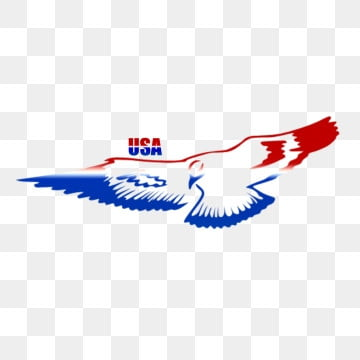 Eagle Cartoon PNG Images | Vector and PSD Files | Free Download on