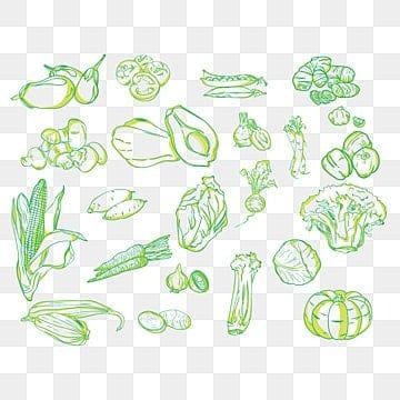 Background material design for fruits and vegetables, Mascot, Cartoon, Food PNG and Vector illustration image