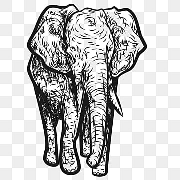 Elephant Png Images Download 2900 Elephant Png Resources With Transparent Background Download elephant png images transparent gallery. https pngtree com freepng grey elephant 3691582 html