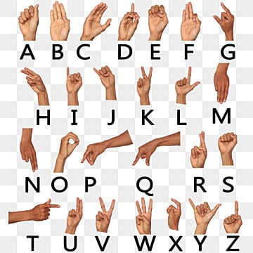 Hand Png Images Vector And Psd Files Free Download On Pngtree Find & download free graphic resources for hands. hand png images vector and psd files
