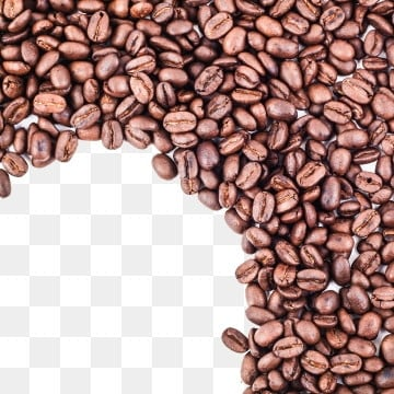 coffee beans png vector psd and clipart with transparent background for free download pngtree coffee beans png vector psd and