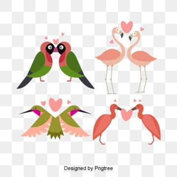 cartoon valentines day birds  animals and lovers illustration, Originality, Animal, Cartoon PNG and PSD